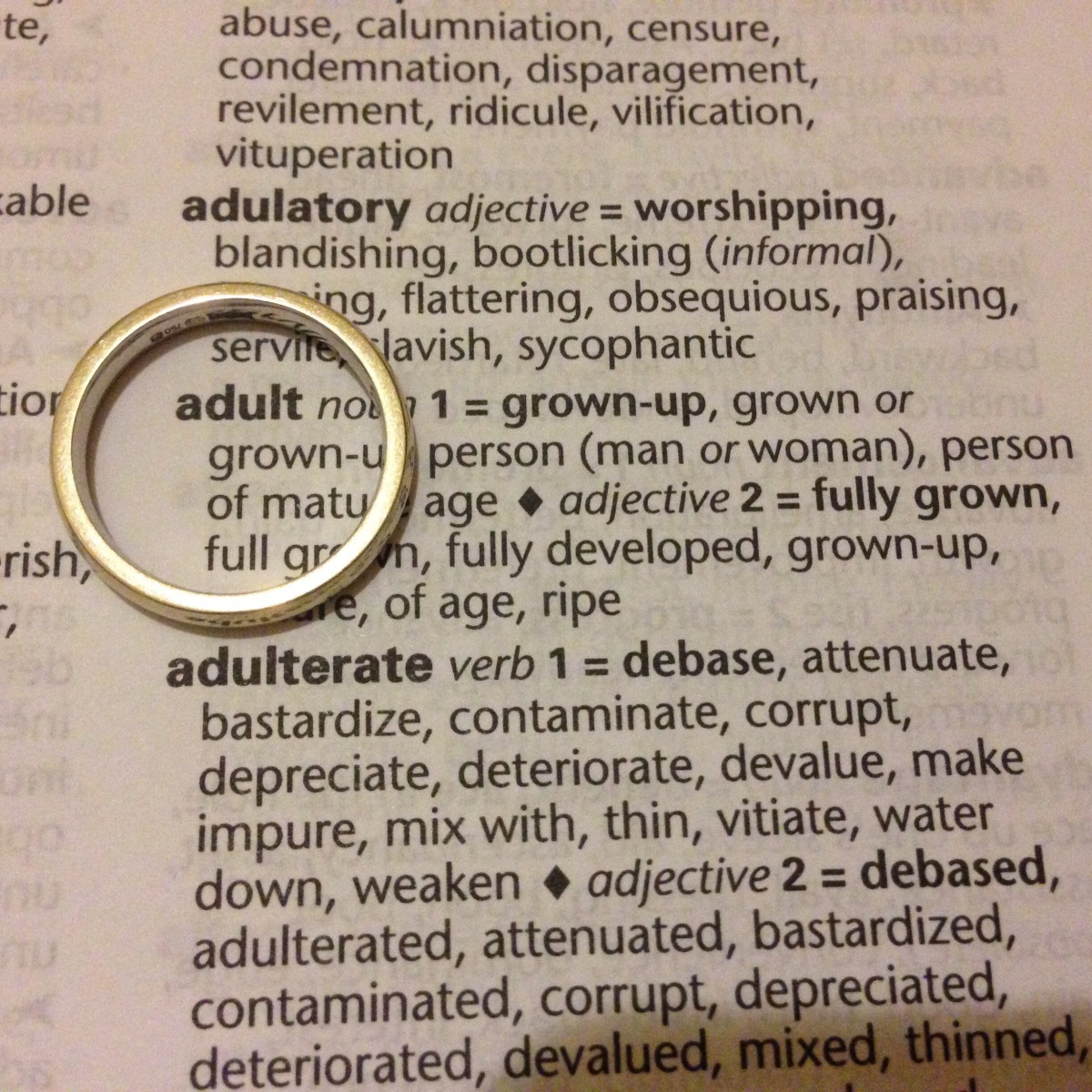 A-Z of Divorce: A is for...Adulting